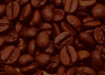 beans-bg