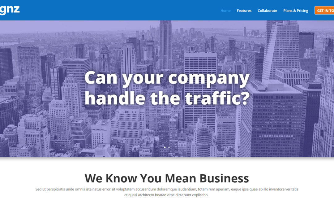 Signz Free Divi Business Page Layout